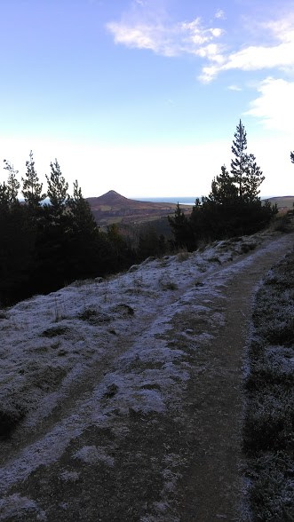 View of Sugar load from half way point up Maulin